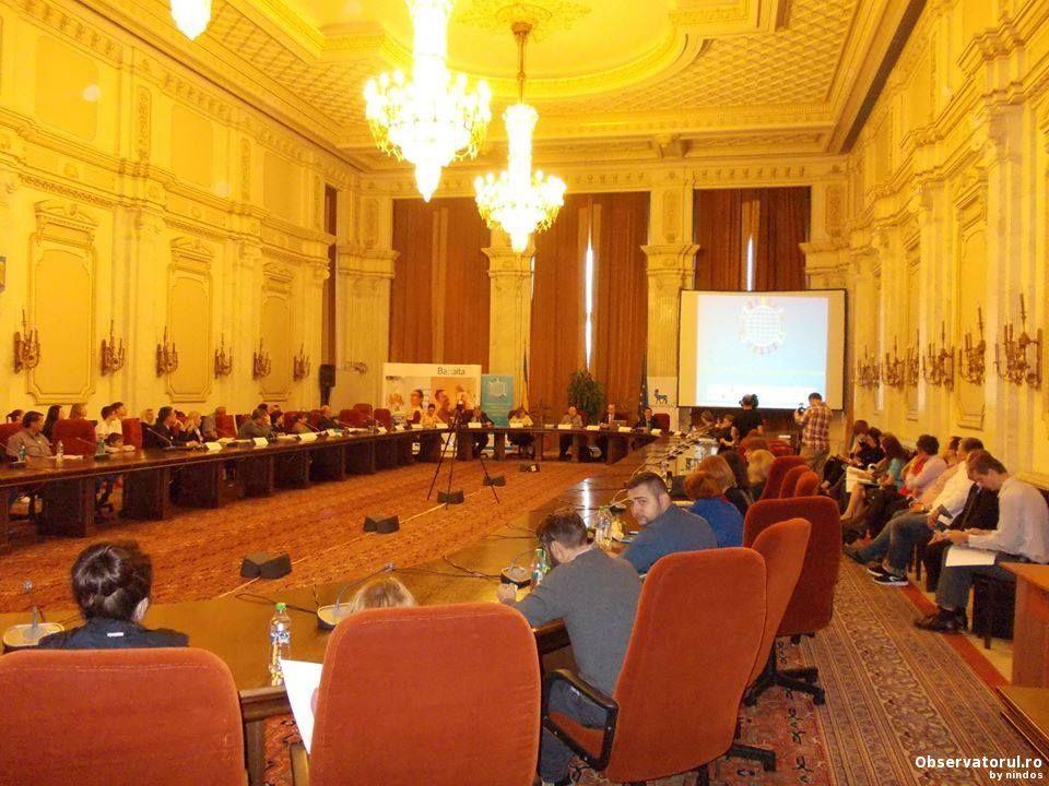 Copiii romani nascuti dupa data de 9 februarie 2011 vor primi 500 de euro in scop educational