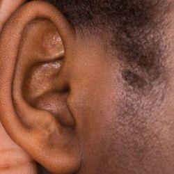 Terapia genetica a restabilit auzul la animale