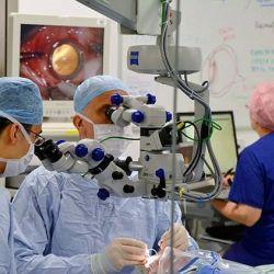 Terapia genica impiedica orbirea